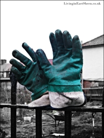 Even the gloves make welcoming gestures when on a break