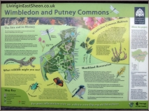 Wimbledon & Putney Commons