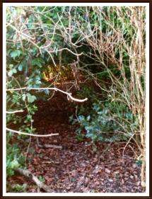 A hiding place?