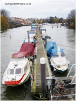 Which boat to sail today
