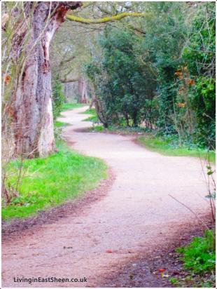 Path to where?