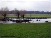 A new lake.