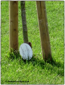 Easter Egg Sticks