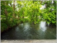 The river Wandle