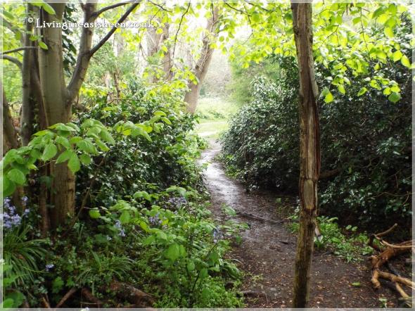 Palewell Common