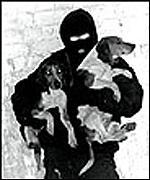 _1154948_dog.150