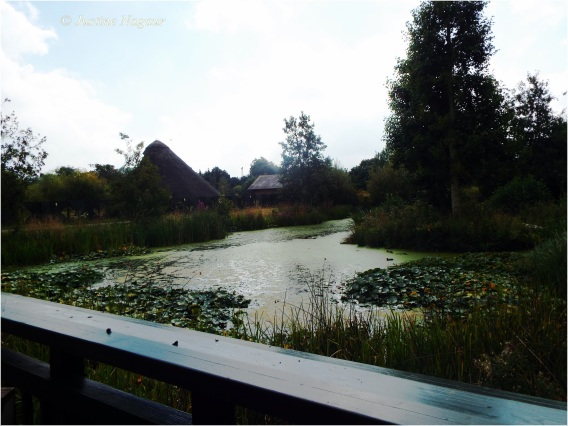 The London Wetlands Centr