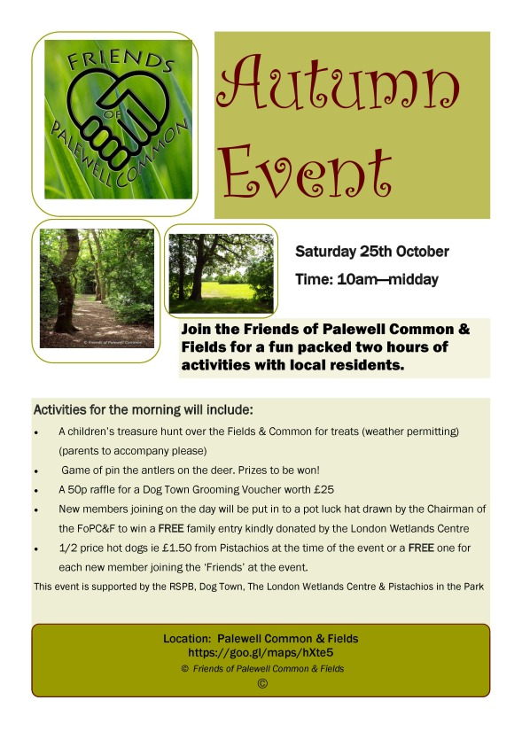 The Friends of Palewell Common Autumn Event