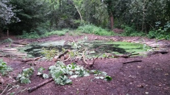 Palewell Pond Vandalism